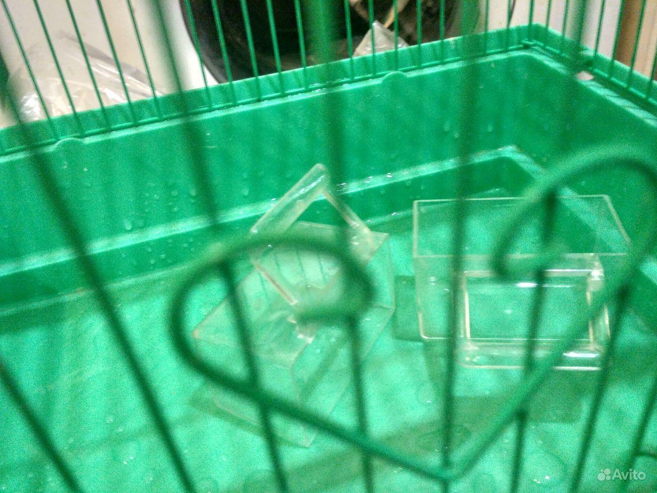 Клетка для в Краснодаре - фотография № 3