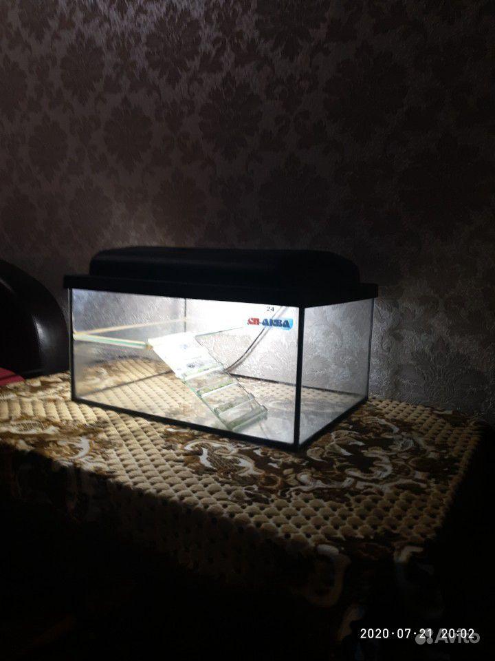 Аквариум купить на Зозу.ру - фотография № 2