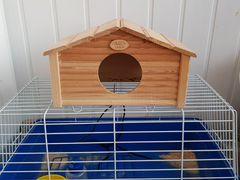 Клетка и домик для грызунов