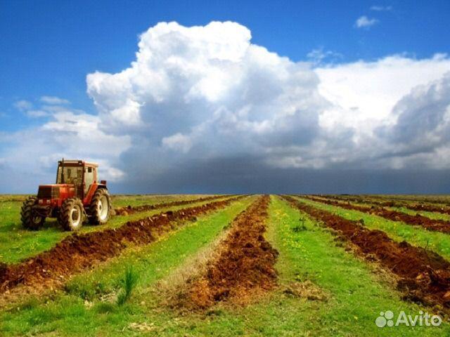 аренда земли под сельское хозяйство в ленинградской области часть