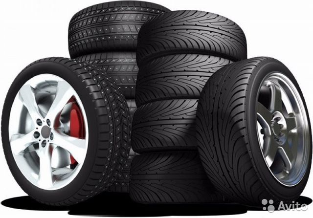 купить автомобильные шины в симферополе выделяется половыми органами