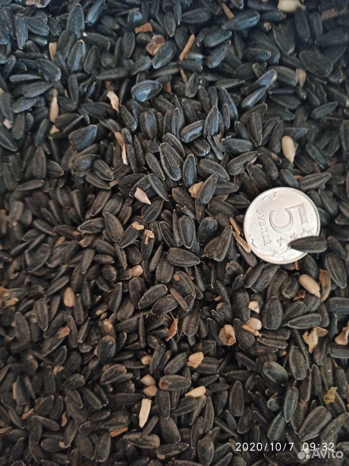Seed  89789524855 buy 1