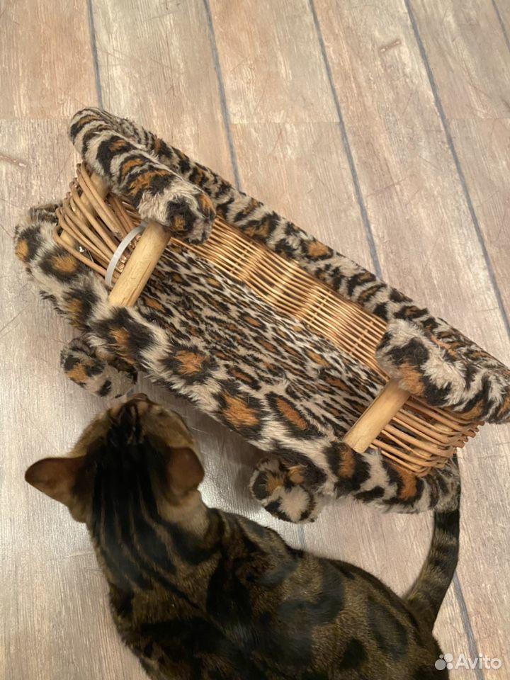 Лежанка для животных  89023768807 купить 2